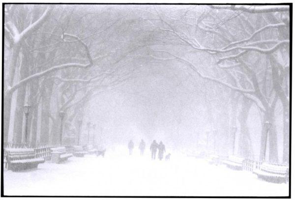 snowstormCP
